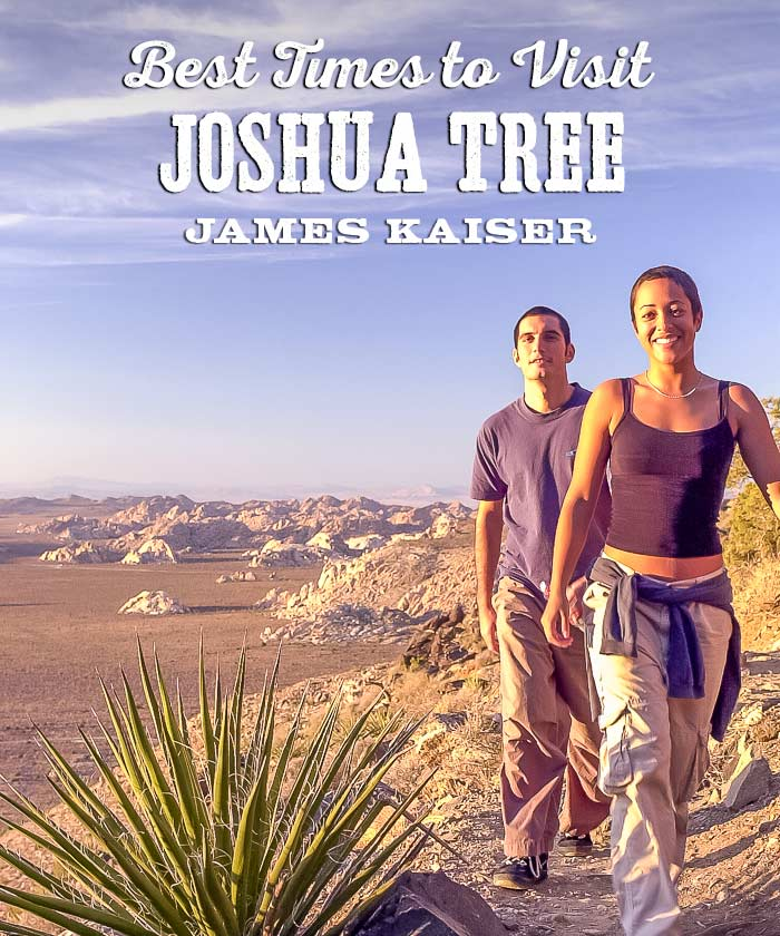 Best Times To Visit Joshua Tree National Park James Kaiser