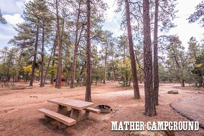 Picnic table, Mather Campground