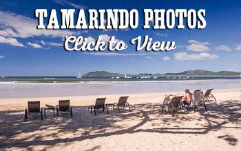 Tamarindo photos