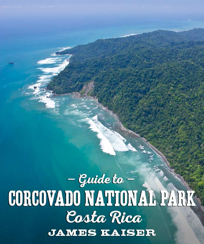 Guide to Corcovado National Park in Costa Rica