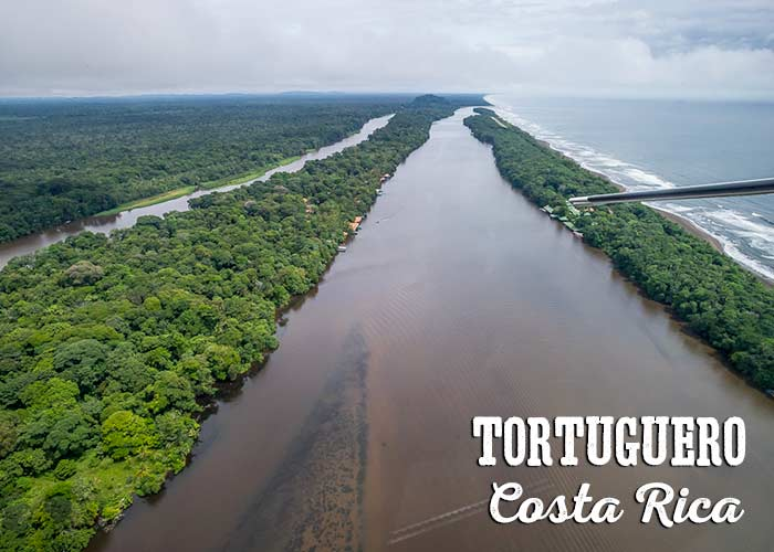 Aerial View Of Tortuguero Costa Rica