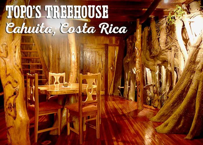 Topo's Treehouse living room