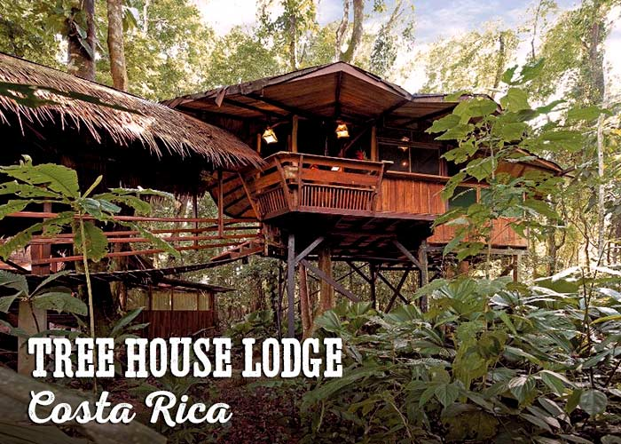 Treehouse Lodge, Costa Rica