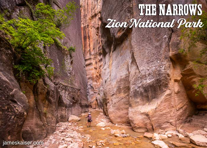 The Narrows Top-Down, Zion National Park